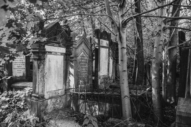 Lodz Cementary judío imagen de archivo libre de regalías