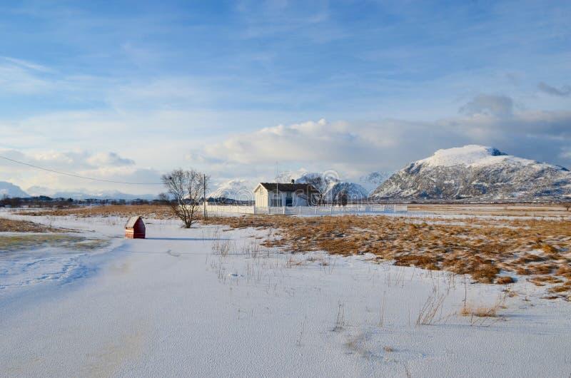 Lofoten海岛,挪威 库存图片