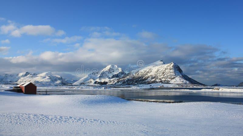 Lofoten arctique photo stock