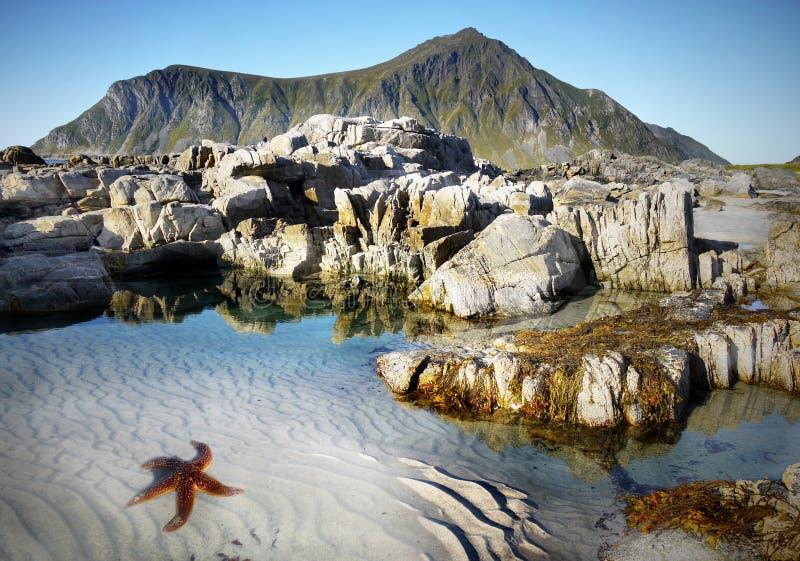 Lofoten famoso, paesaggio della Norvegia, Nordland fotografia stock libera da diritti