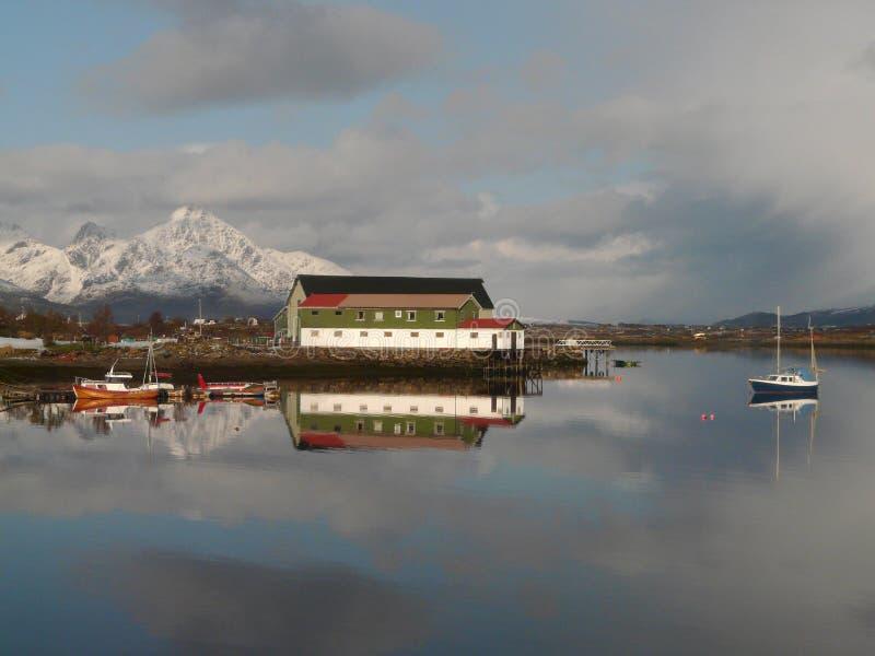 Lofoten's fjord. The bay of Gravdal, Lofoten islands royalty free stock images