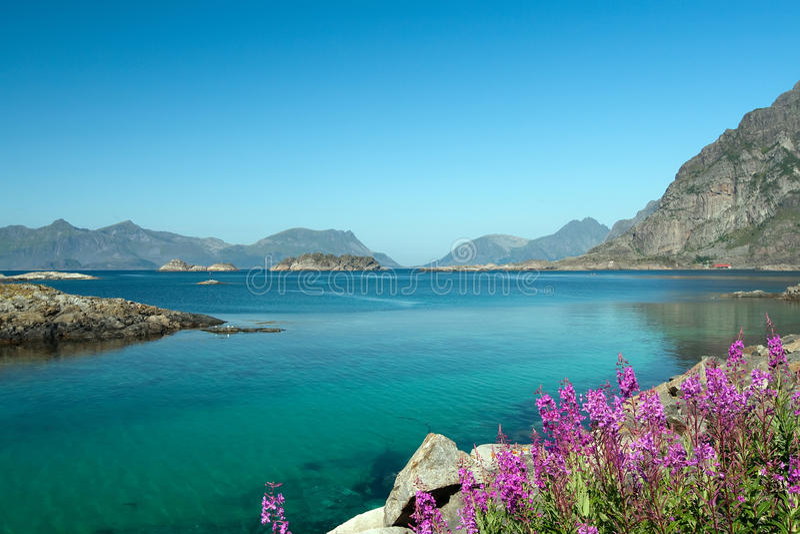Download Lofoten seascape stock photo. Image of landscape, seaboard - 10979174