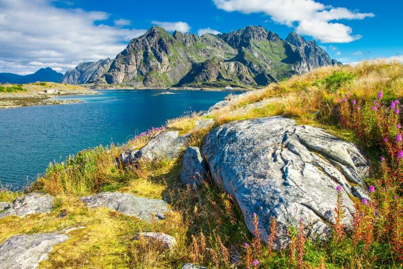 Lofoten wyspy w Norwegia, Europa fotografia stock