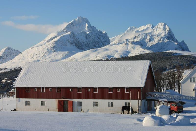 Lofotens Bauernhof stockfoto