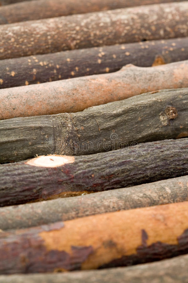 Download Log stock image. Image of branch, rough, stick, timber - 11172207