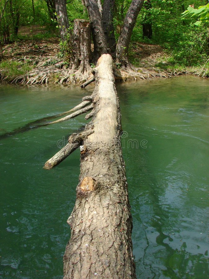 Log-bridge royalty free stock images