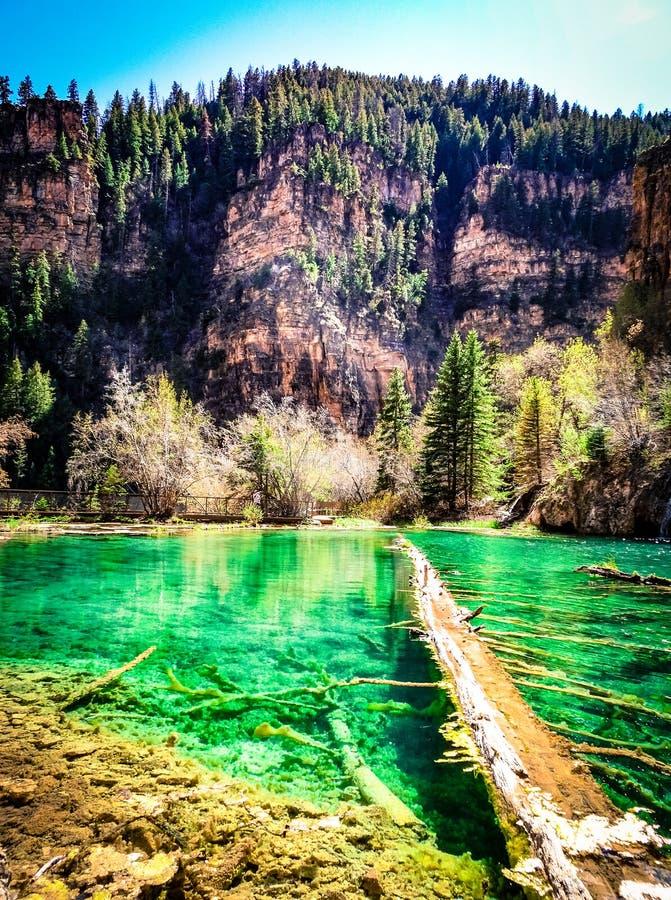 Log caído lago de suspensão fotos de stock royalty free