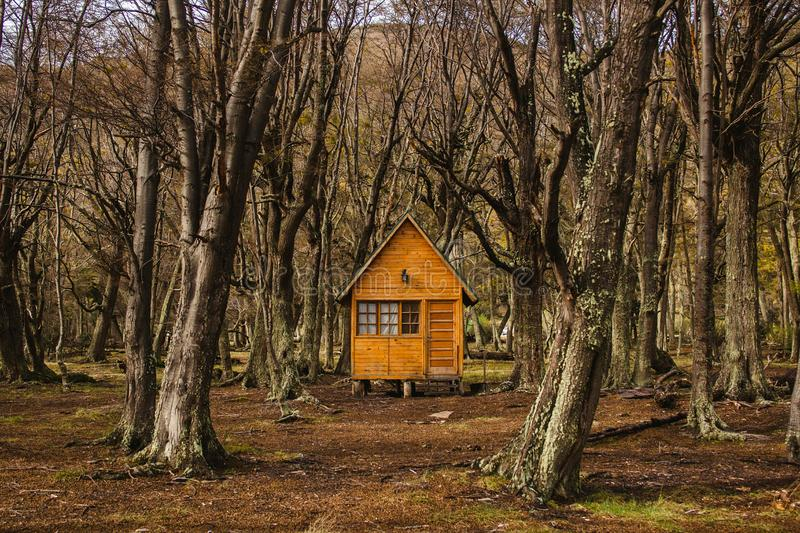 Log cabin in forest tierra del fuego patagonia argentina stock images