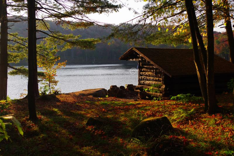 Log Cabin Lean to Shelter Campsite in the Adirondack Mountains During Near Peak Fall Leaf Foliage. Vibrant red, yellows, and oranges of the fall foliage in royalty free stock photos