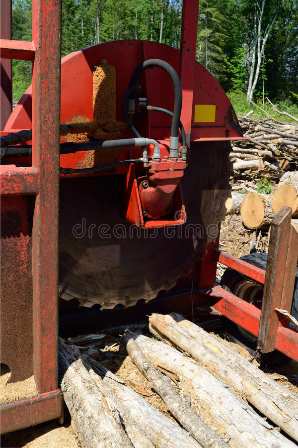 Log Cut Off Saw. Logging circular slasher saw on timber harvest site stock images