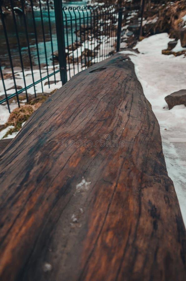 Log da árvore com neve imagens de stock royalty free