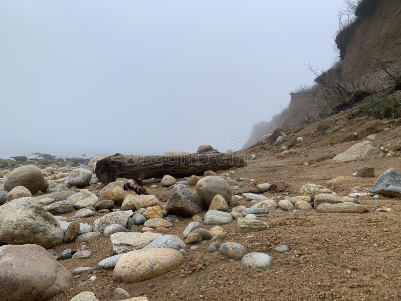 Log da praia com rochas e penhascos em um dia nevoento imagem de stock