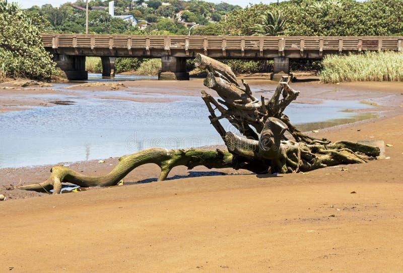 Log de madeira da tração na lagoa vazia contra a ponte Railway imagens de stock royalty free