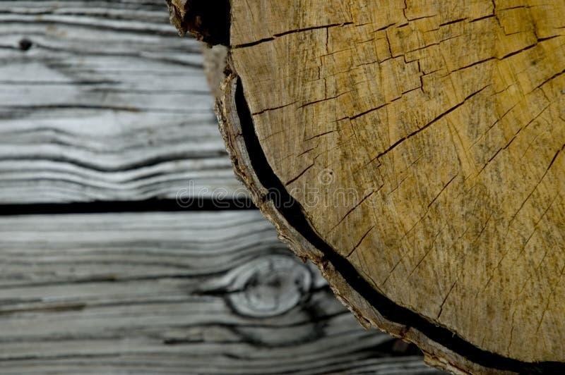 log deski drewna obraz royalty free