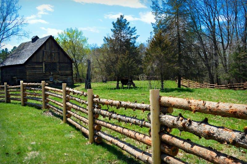 Log Fence Barn Cow stock photography