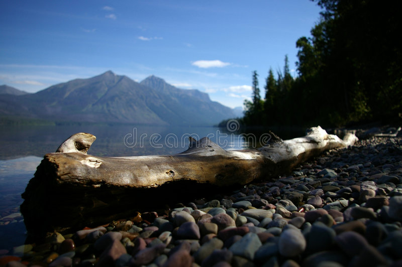 Log by lake macdonald stock images