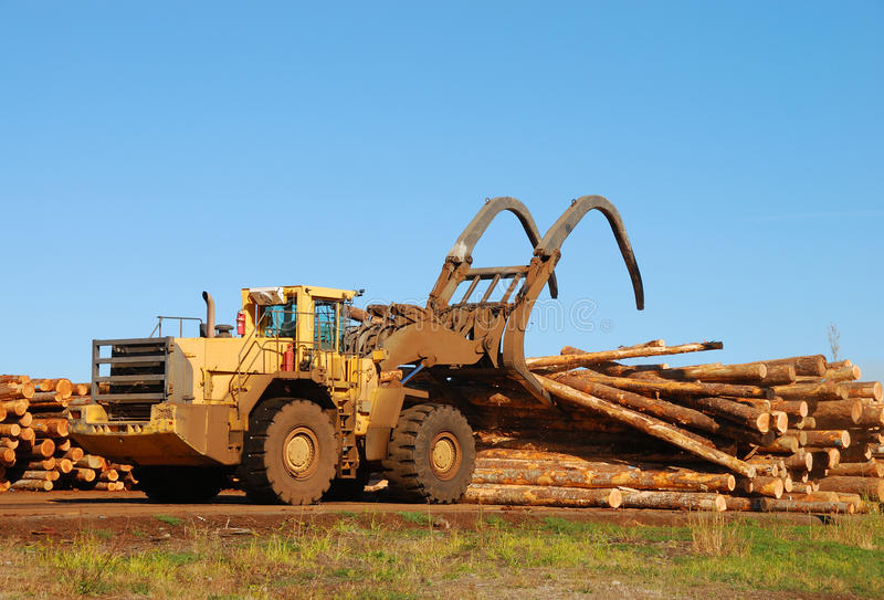 Download Log Loader stock photo. Image of forestry, mill, sawmill - 25637470