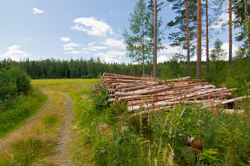 Download Log pile in countryside stock image. Image of agriculture - 15964625
