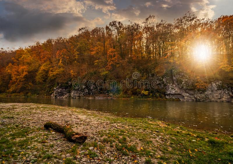 Log on a rocky shore of forest river at sunset. Log on a rocky shore of forest river with yellowed and reddish trees on rocky cliff in autumn mountains. gorgeous stock image