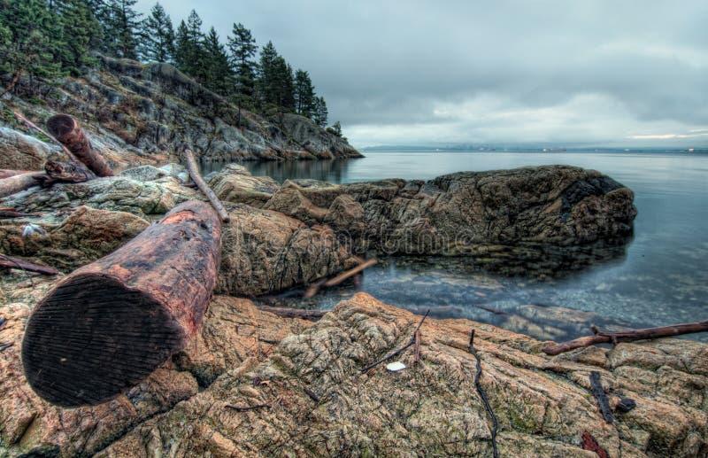 Download Log On Rocky Shoreline stock photo. Image of ocean, nobody - 27415862