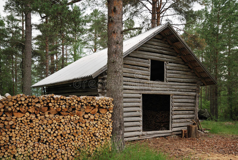 Log shed with firewood in forest. royalty free stock photo