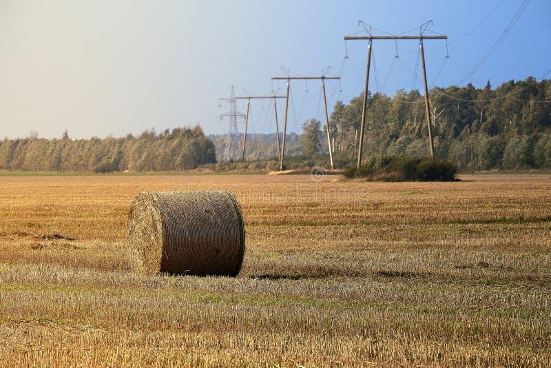 log siano Rolnictwa pole z niebieskim niebem i liniami energetycznymi Wiejska natura w rolnej ziemi Słoma na łące zdjęcia stock