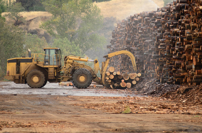 Log Yard stock photography