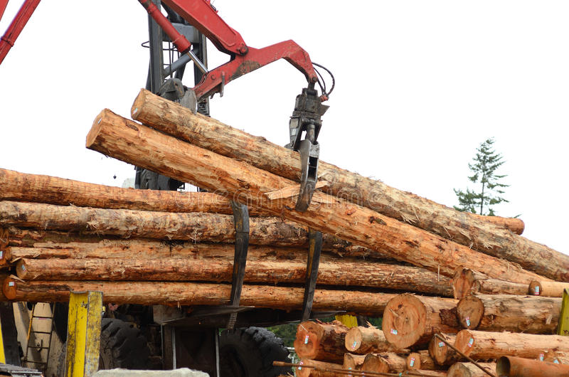 Log Yard. Fir logs being moved for loading onto a commercial ship for export to Asia on the mill dock in Coos Bay and North Bend Oregon stock photography