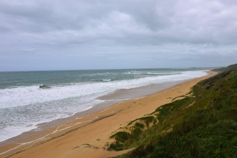 Logan plaży dopatrywania wielorybia platforma w Wiktoria zdjęcie stock