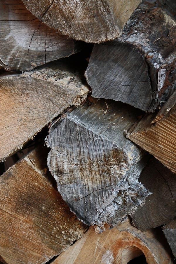 Logarithmes naturels d'incendie images stock