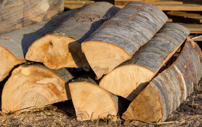 Logarithmes naturels de bois de construction photos stock