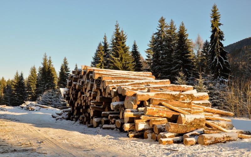 Logarithmes naturels de bois de construction de l'hiver avant le transport pour avancer lourdement le moulin image stock