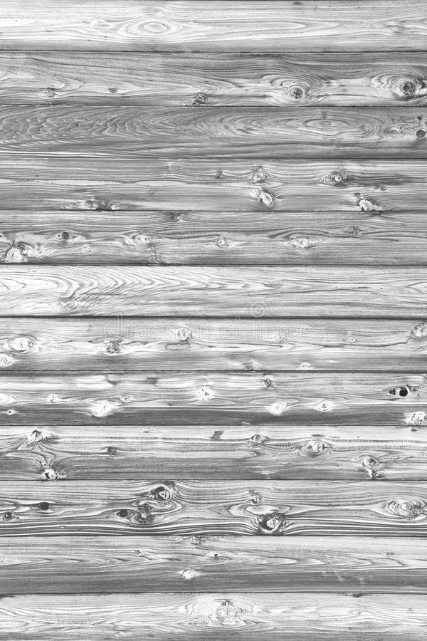 Logarithmes naturels en bois image stock