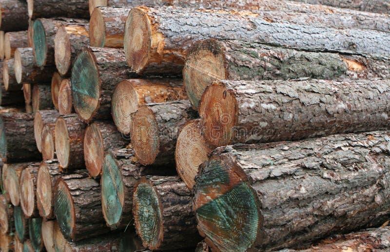 Logarithmes naturels en bois de bois de construction photo libre de droits