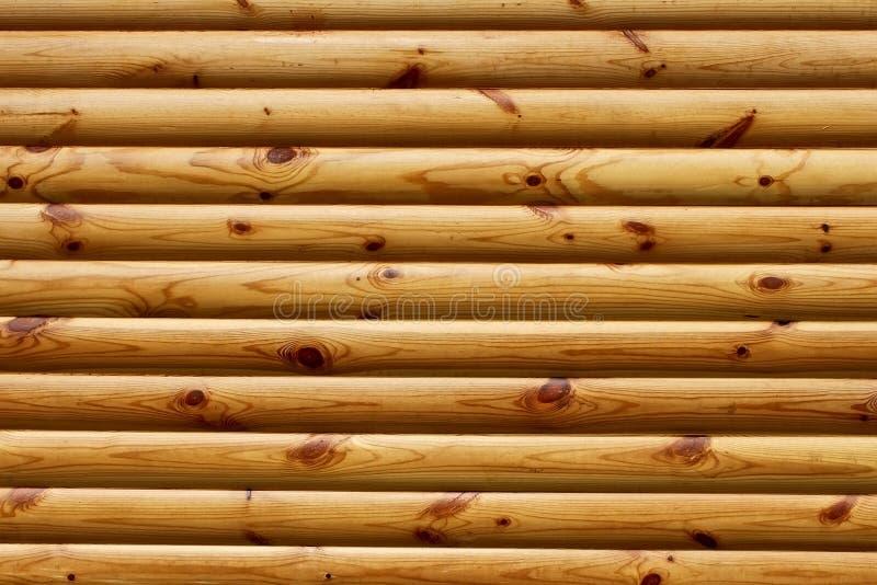 Logarithmes naturels en bois polis par parallèle image libre de droits
