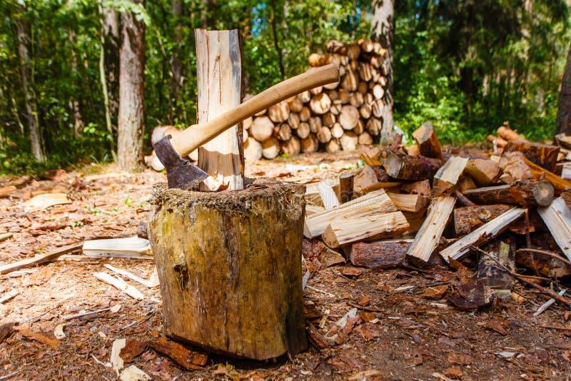 Logboek het verdelen in stapel van het pijnboom de bosbrandhout royalty-vrije stock foto