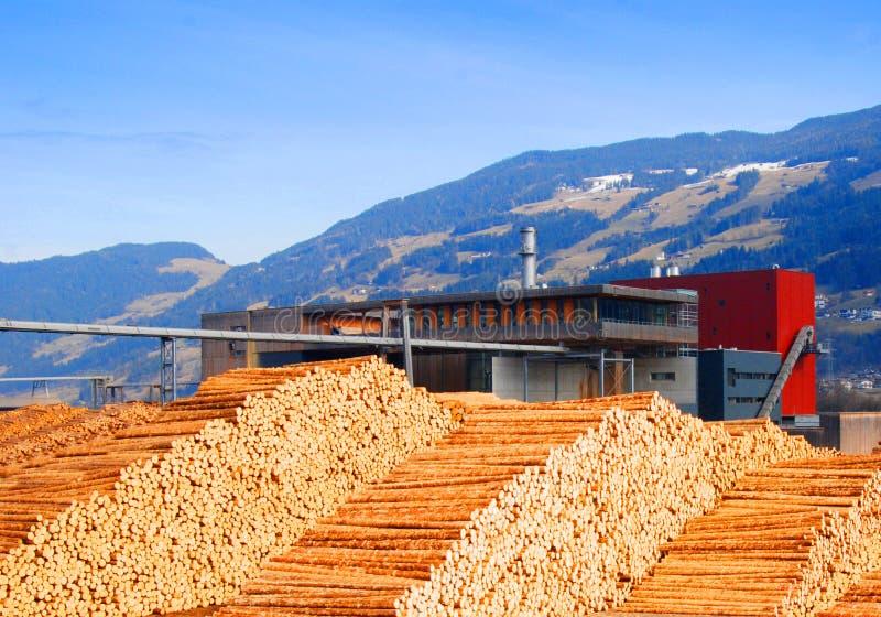 Logboeken bij timmerhoutfabriek royalty-vrije stock afbeeldingen