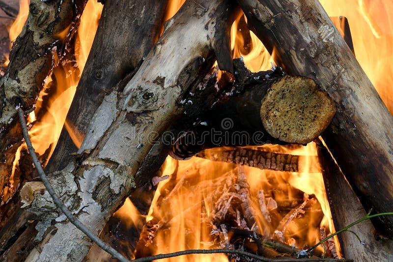 Logboeken die in kampvuur branden stock afbeelding