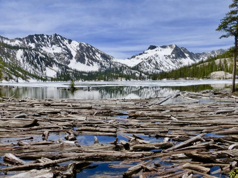 Logboekjam op hoog bergmeer stock afbeeldingen