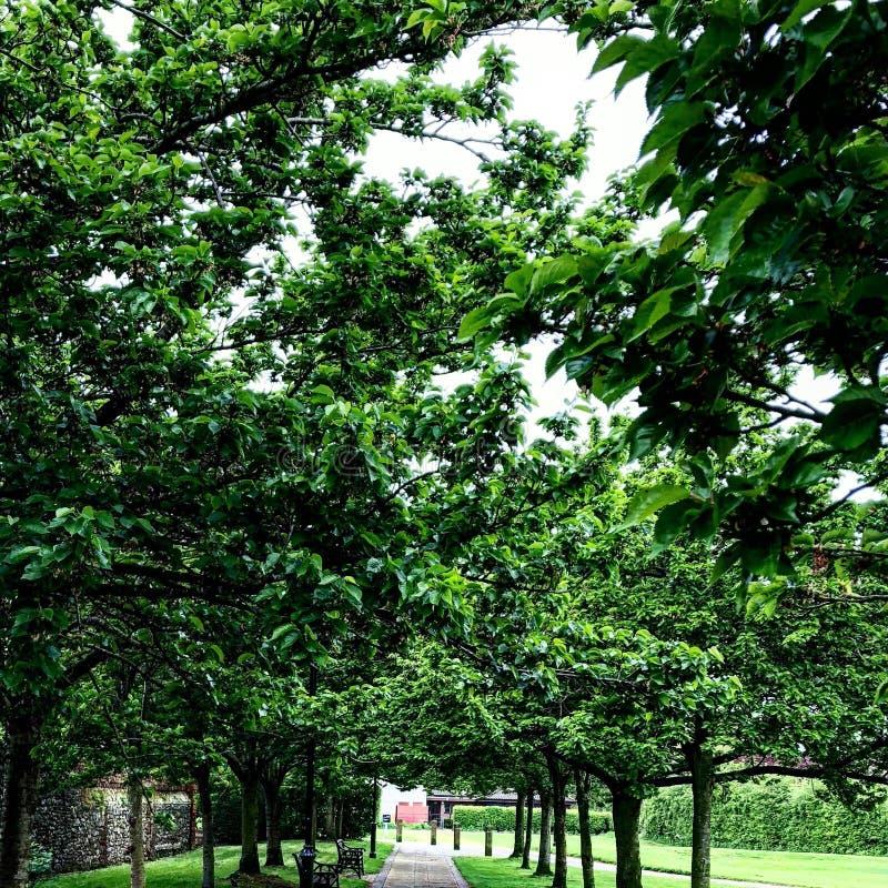 Loge du portier de jardin d'église d'abbaye de Sunbeam photo stock