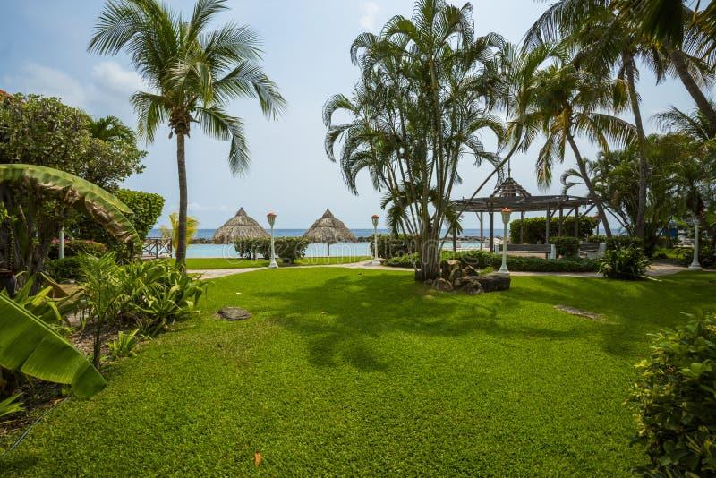 Logements colorés de station de vacances avec des palmiers photographie stock libre de droits
