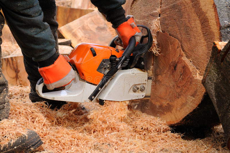 Logger With Chainsaw Royalty Free Stock Photos Image