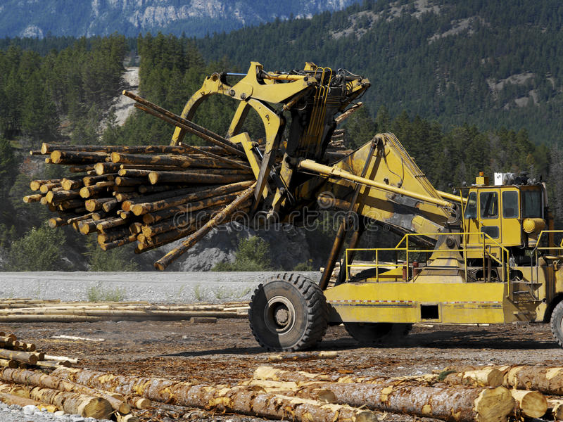 Download Logging - British Columbia - Canada Stock Photo - Image: 17396808