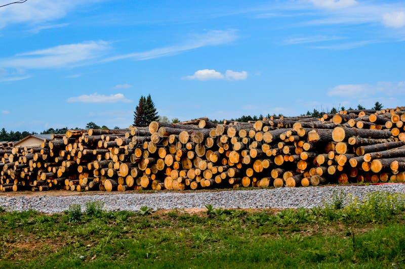 Logging Company dans les Northwoods du Wisconsin images stock
