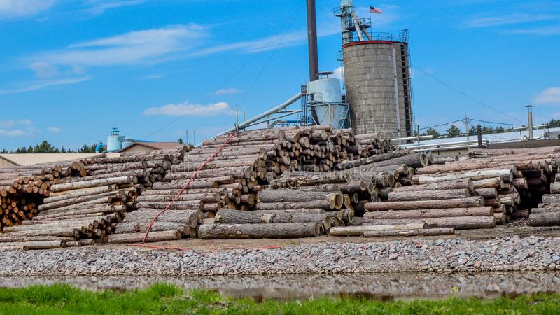 Logging Company in the Northwoods of Wisconsin. A logging company with many logs piled up in the Northwoods of Wisconsin near Arbor Vistae royalty free stock images