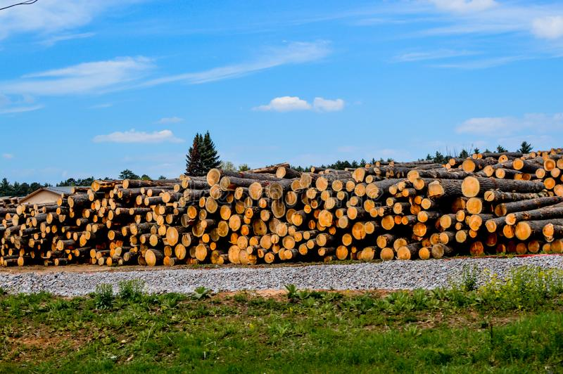 Logging Company in the Northwoods of Wisconsin. A logging company with many logs piled up in the Northwoods of Wisconsin near Arbor Vistae stock images