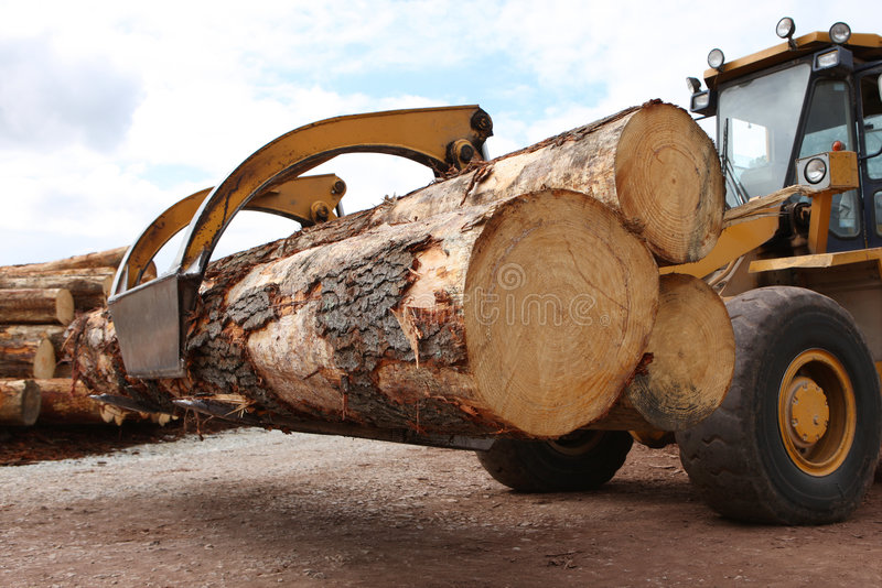 Download Logging Industry stock photo. Image of industrial, pile - 6876650