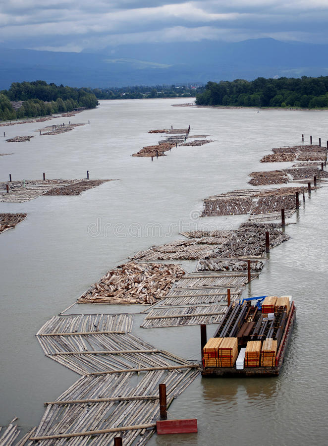 Logging Operation on Water stock images