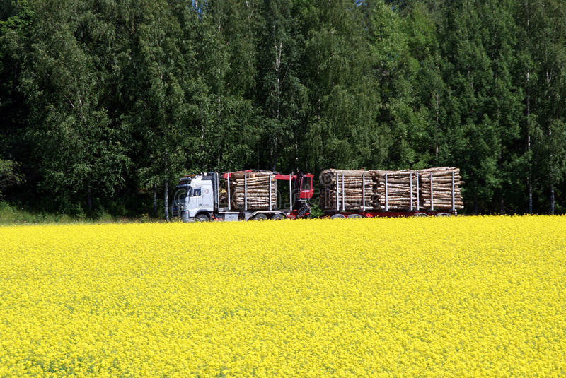 Logging Truck and Rapeseed Field stock image