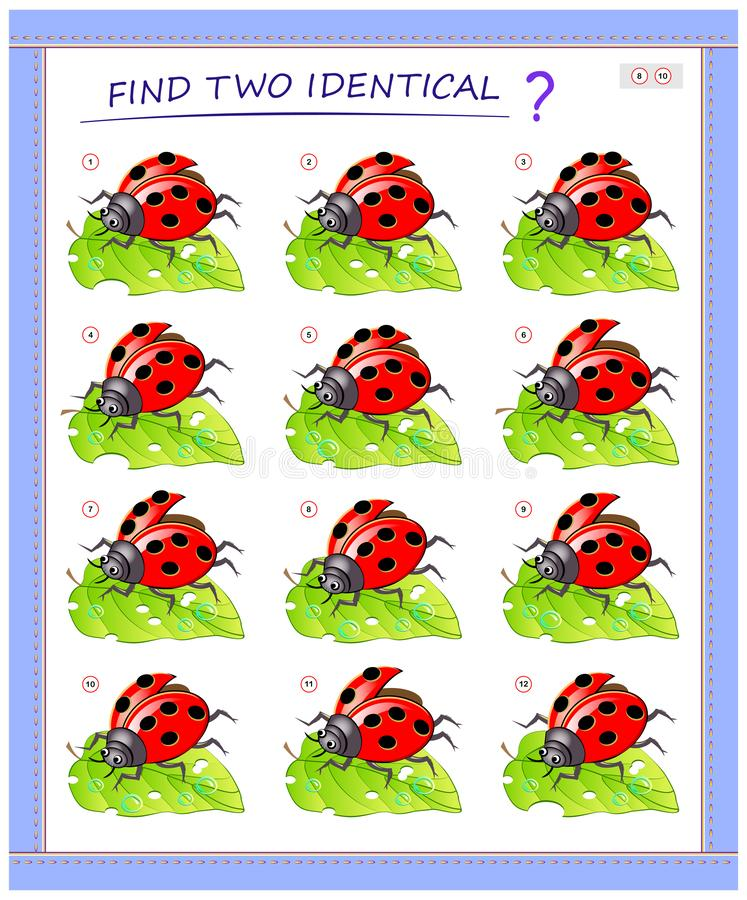 Logical puzzle game for little children. Need to find two identical ladybirds. Educational page for kids. royalty free illustration
